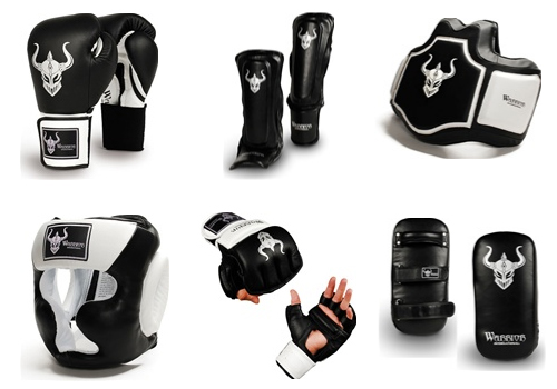 Protective Gears for MMA Enthusiasts